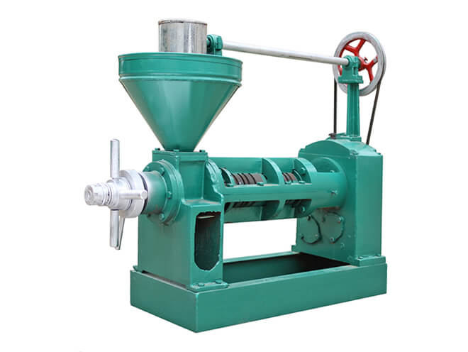 6YL-80 screw oil press with the best price