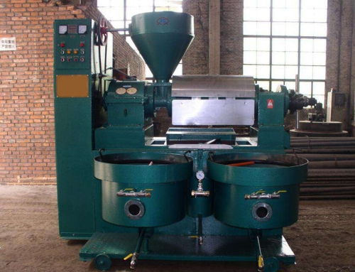 The Most Profitable Small Business in Rural-Oil Press Machine