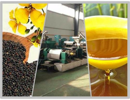 30T/D Canola Oil Plant
