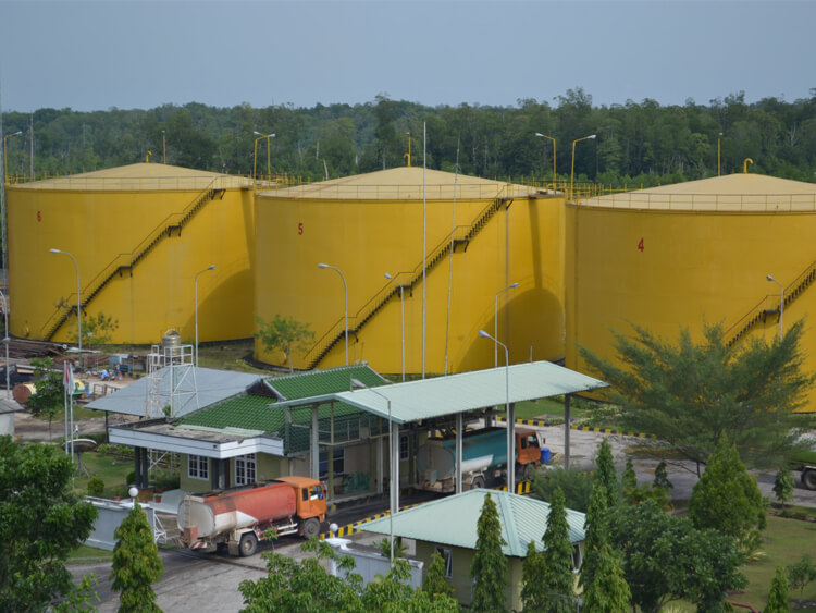 palm fruit oil mill plant