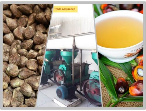 5T/D Palm Kernel Oil Plant