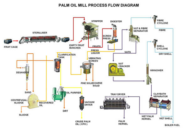palm oil mill processing steps