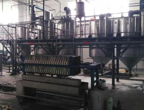 1T/D Palm Oil Refining Plant-Nigeria