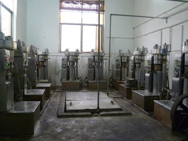 moulin à huile de sésame
