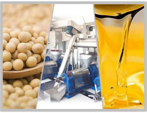 20T/D Soybean Oil Plant
