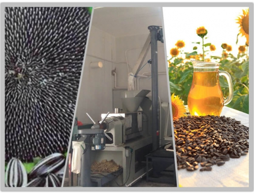 20T/D Sunflower Oil Plant