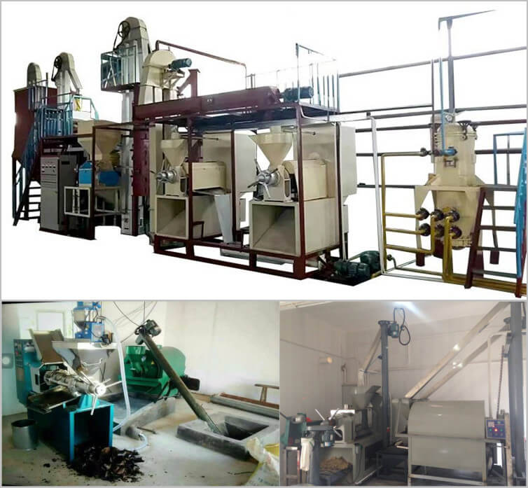 edible oil production factory